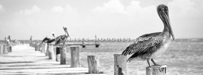 Valises-mouchet.fr (identité de marque, site internet, stratégie de communication, etc…)